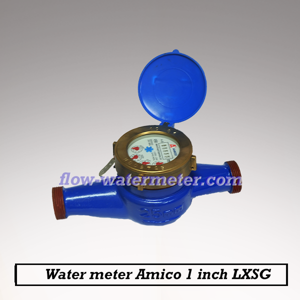 Water meter amico 1inch DN25