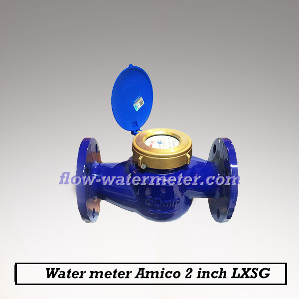 Water meter Amico 2 Inch DN50