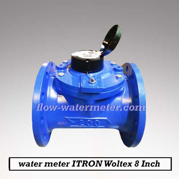 Water meter Itron 8 Inch