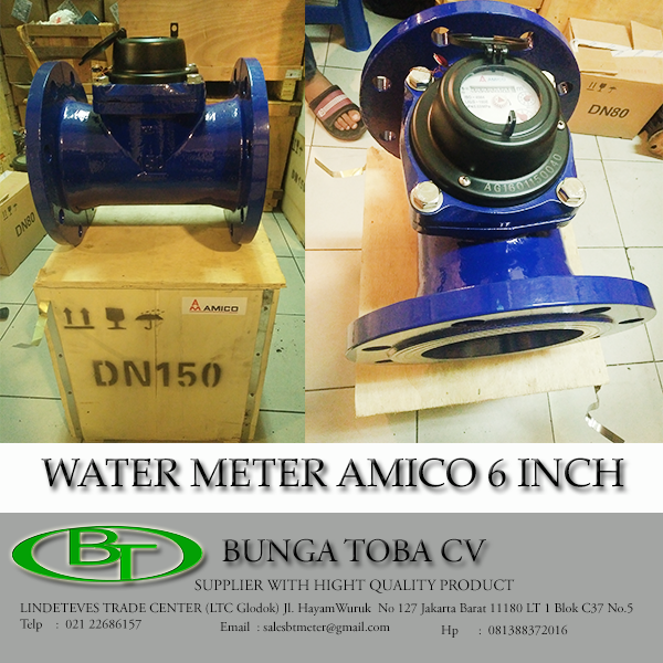 WATER METER AMICO 6 INCH LXLG-150E